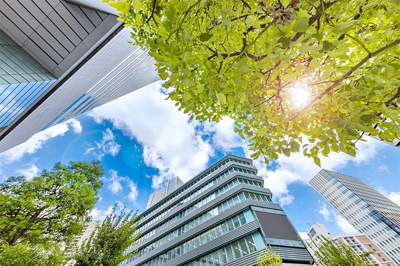 Assurance-Vie : La nouvelle équation immobilière